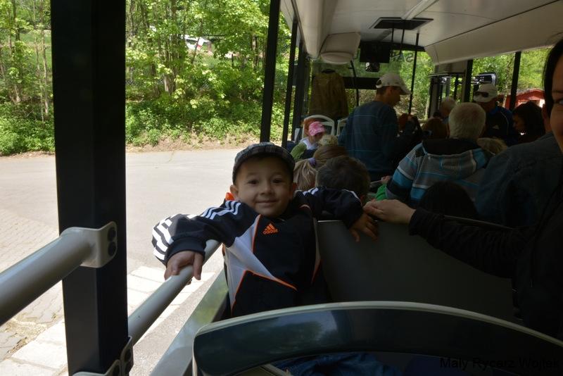 Autobus - safari